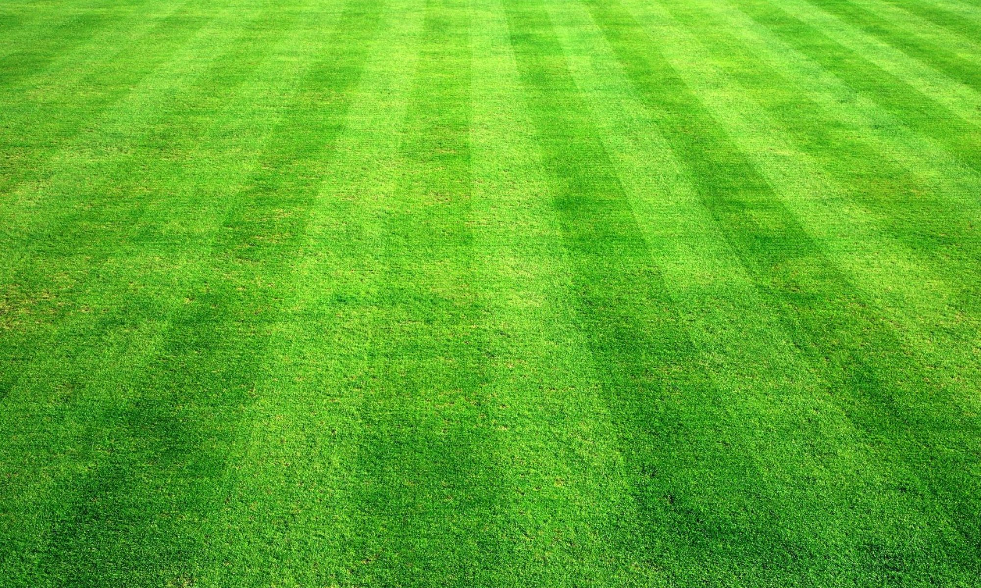Huddersfield Croquet Club